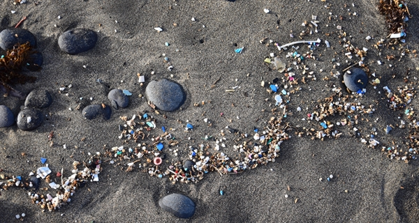Join the Geneva Beat Plastic Pollution Dialogues, online, starting 26 November 2020